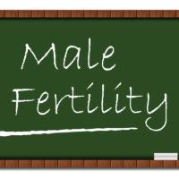 Bambu Clinic male fertility